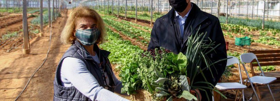 Μέτρα για τις βιολογικές καλλιέργειες ανακοίνωσε από τη Ραφήνα ο Σπήλιος Λιβανός