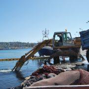 """Καθάρισε το λιμάνι από το """"ΜΑΝΤΑΛΕΝΑ"""""""