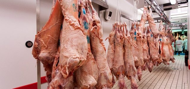 Αυξημένη κατά 20% τουλάχιστον η τιμή του οβελία φέτος, με την έλλειψη ντόπιου κρέατος στην αγορά να ξεπερνά το 30%