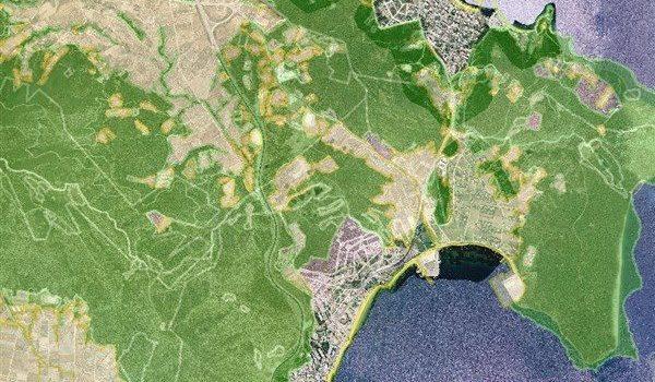 Δασικοί Χάρτες: «ειδοποίηση – παγίδα» στην πλατφόρμα του Κτηματολογίου