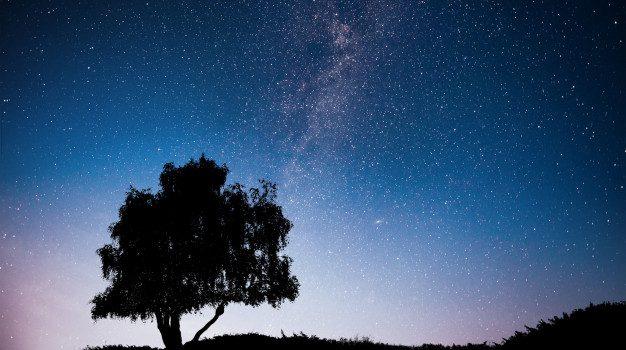 Κορυφώνονται αύριο το βράδυ και στην Ελλάδα οι Λυρίδες, τα πρώτα «πεφταστέρια» της άνοιξης