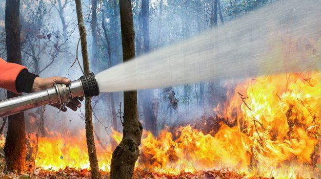 Πυρκαγιά στο χωριό Κυψέλη του Δήμου Τροιζηνίας-Μεθάνων