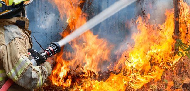 Η πυρκαγιά στα Γεράνεια Όρη ήταν η σημαντικότερη δασική της τελευταίας δεκαετίας, καίγοντας 52.000 στρέμματα δάσους, σύμφωνα με το meteo του Αστεροσκοπείου