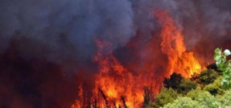 Σε πλήρη εξέλιξη και με πολλές εστίες η μεγάλη πυρκαγιά στα Γεράνεια. Προβλέπεται δύσκολη νύχτα με ισχυρούς ανέμους, εκκενώσεις οικισμών και συστάσεις για εγρήγορση των πολιτών