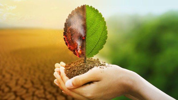 Η προστασία της βιοποικιλότητας ασπίδα για την κλιματική κρίση