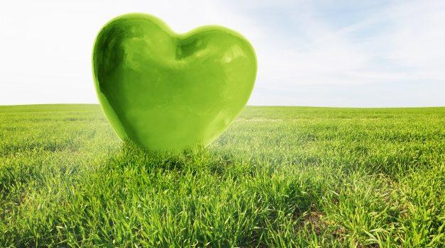 Ευρωπαϊκή Πράσινη Συμφωνία: Η Επιτροπή στοχεύει στη μηδενική ρύπανση στον αέρα, το νερό και το έδαφος