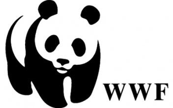 WWF: Σημαντική αύξηση της ανησυχίας των ανθρώπων για την απώλεια της φύσης παγκοσμίως