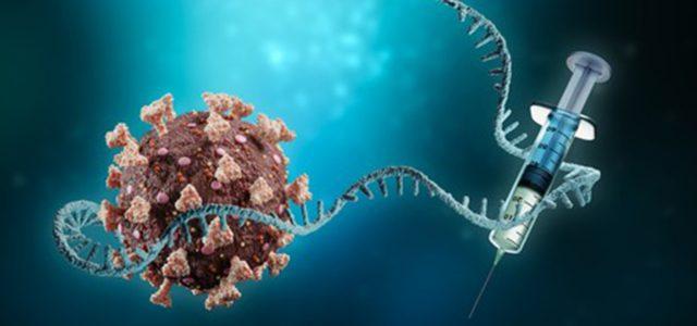 Τις επόμενες ημέρες διαθέσιμα και τα mRNA εμβόλια στα νησιά – Το φθινόπωρο η συζήτηση για προνόμια στους εμβολιασθέντες