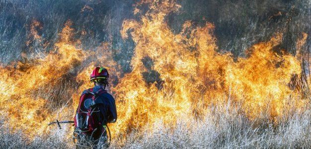 Πυρκαγιά στην περιοχή Ριτσώνα του Δήμου Χαλκιδέων Ευβοίας