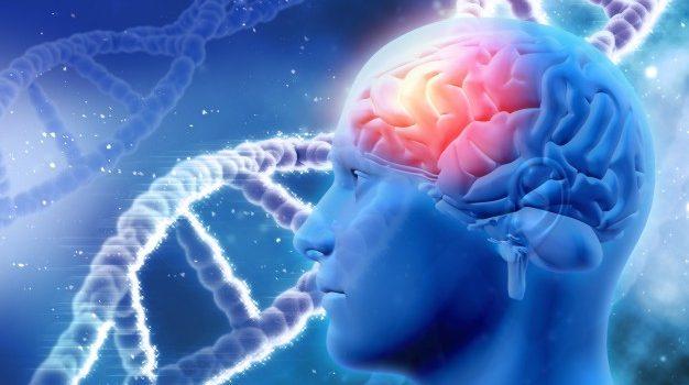Καινοτόμα θεραπεία εγκεφαλικών όγκων με RNA αναπτύσσουν επιστήμονες στις ΗΠΑ με επικεφαλής έναν Έλληνα