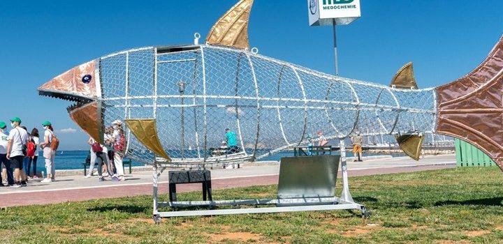 Σάββας, ο «καρχαρίας» που «τρώει» πλαστικά στον Άλιμο
