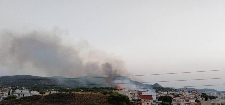Φωτιά στην Σαλαμίνα
