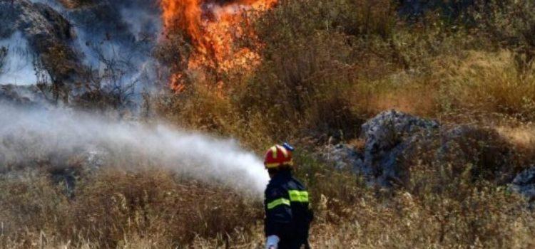 Άμεση επέμβαση της Πυροσβεστικής και του Δήμου Σαλαμίνας