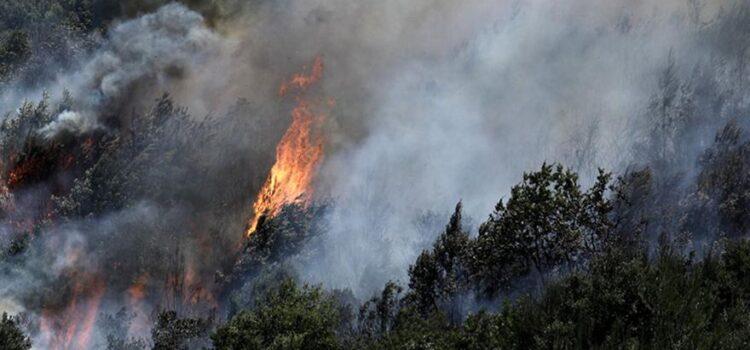 Συνεχείς ρίψεις νερού στα μέτωπα της πυρκαγιάς στο Σειχ-Σου, από καναντέρ και ελικόπτερα