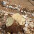 Aυθαίρετες εργασίες με πιθανή χρήση τροχού στο Στενό Φανερωμένης