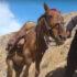 Tο μεγάλο και πανάκριβο μυστικό του Αφγανιστάν: Οι σπάνιες γαίες φέρνουν το Πεκίνο πιο κοντά στους Ταλιμπάν